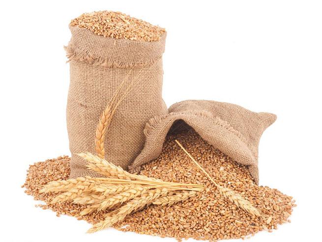 小麦物理性质与工艺效果的关系
