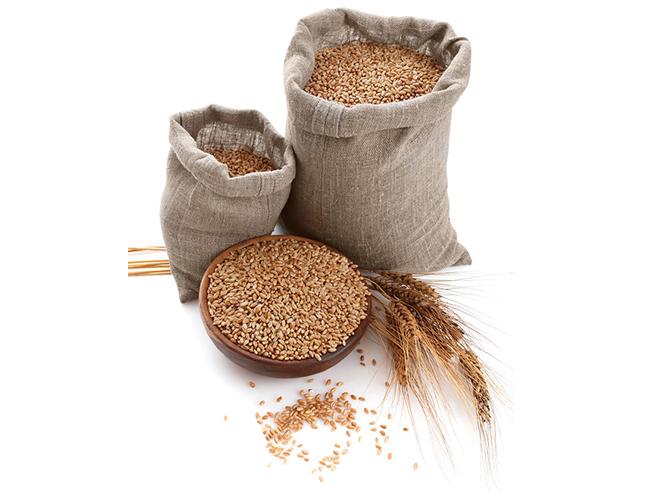 小麦篇--除杂与分级原理